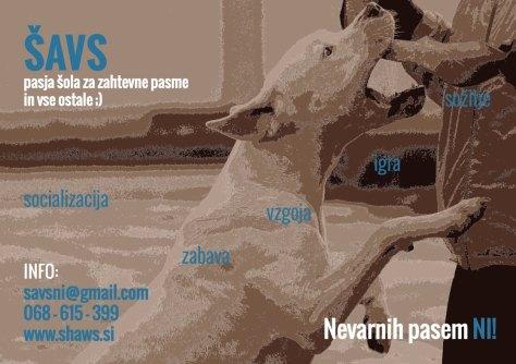 ŠAVS - plakat