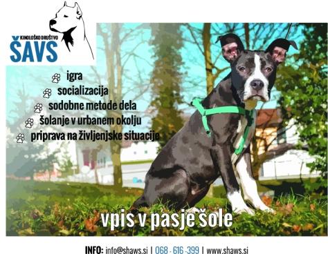 ŠAVS - plakat_Postojna_Kenzo_2