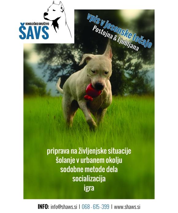 ŠAVS - plakat_Nemo