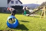domači poligon za agility