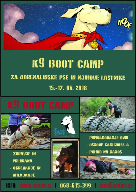 ŠAVS - boot camp - flyer 4 - W.jpg